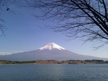 Fujiさんの画像