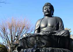 圧倒的な存在感!東京・関東の大仏5選
