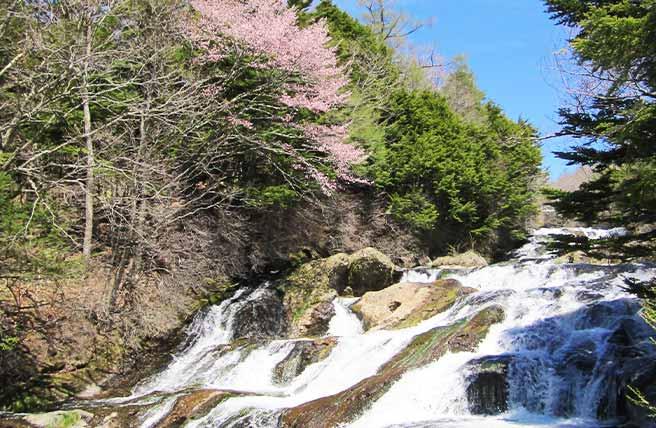 夏休みは自然に触れよう!滝のパワースポット